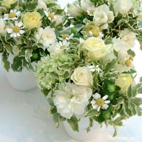 ホワイトとイエローの小花を中心に白い素焼きの鉢にアレンジ